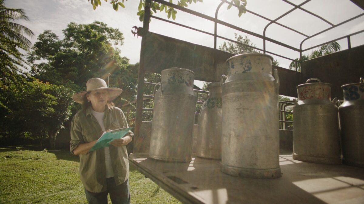 Los productos lácteos de Nestlé generan más de 10 mil empleos indirectos en Nicaragua