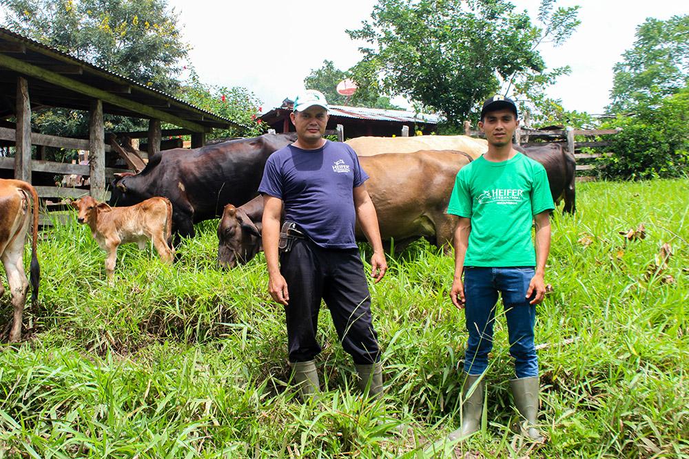 Cargill y Heifer International se unen para fortalecer producción animal en Centroamérica